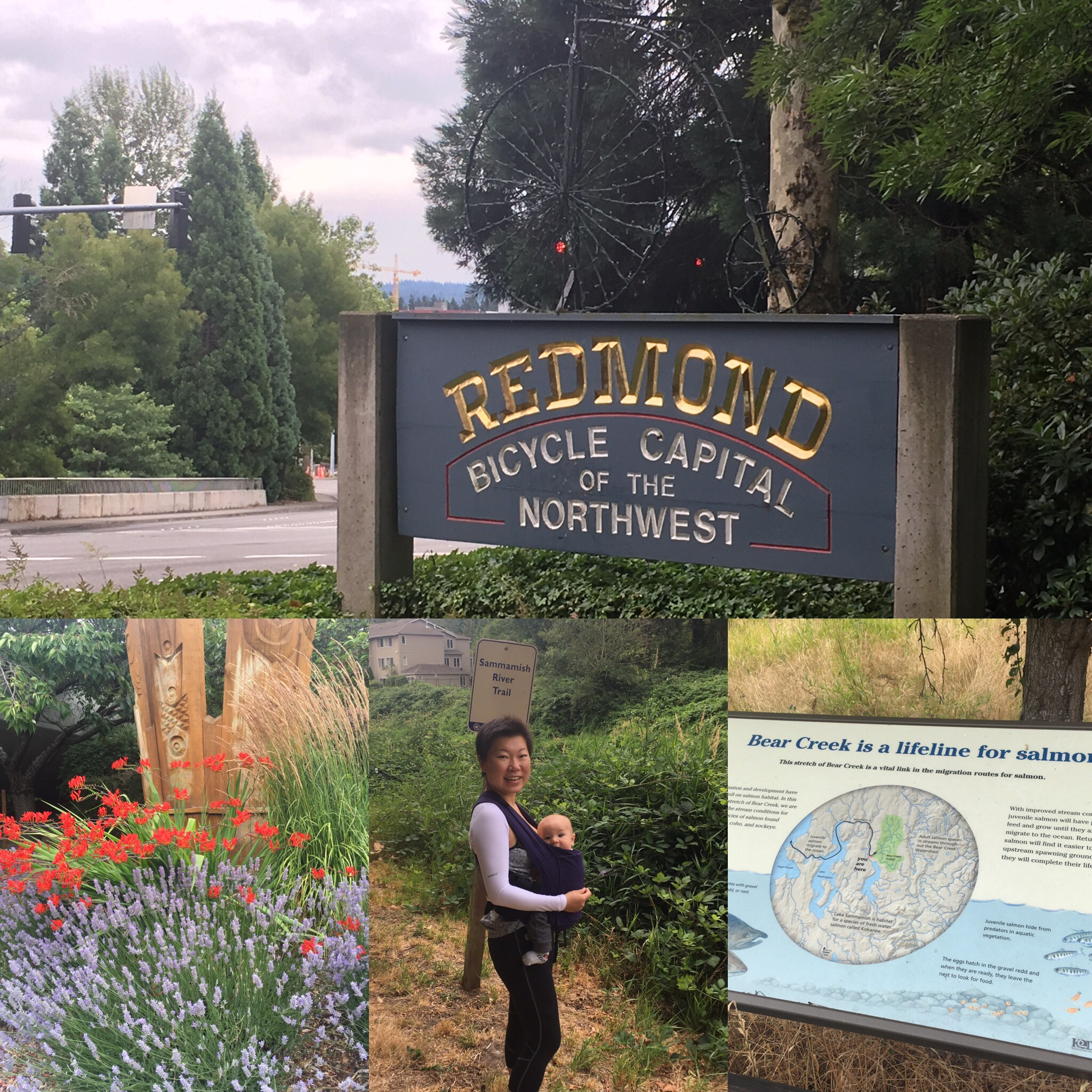 Exploring Redmond