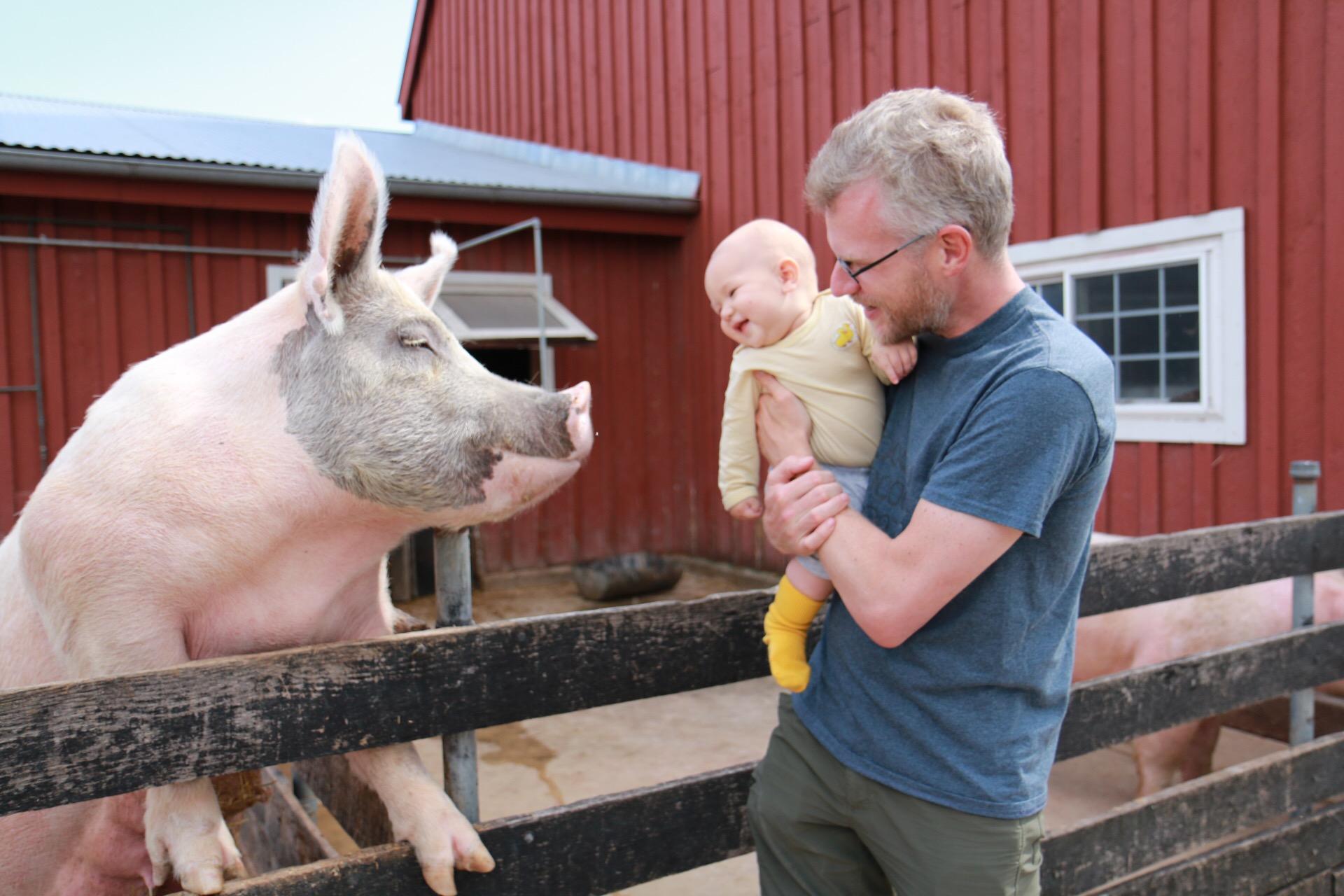 A Farm Visit